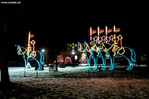 A picture from Winter Festival of Lights