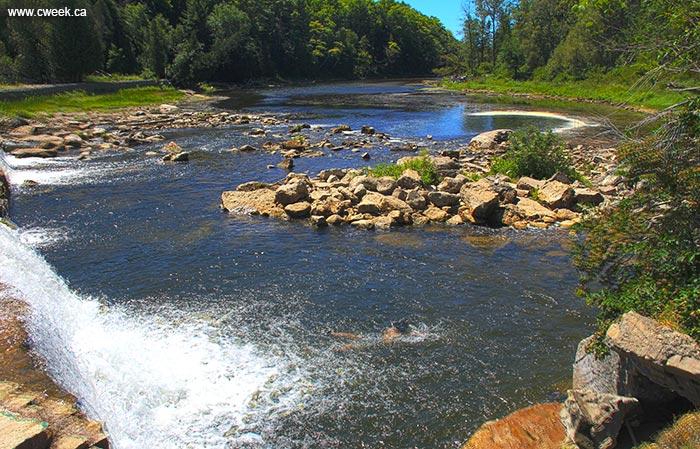 Sauble River